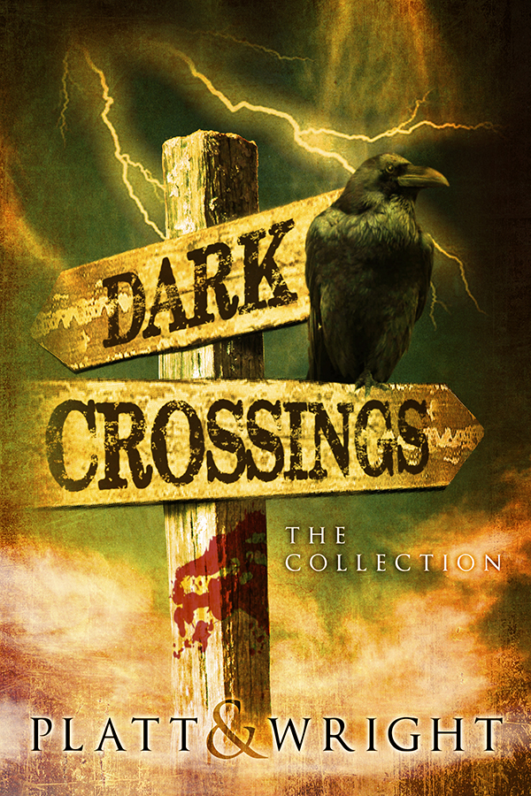 Dark Crossings Cover Winner