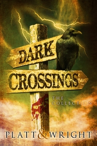 Dark Crossings Cover Contest 2 crow