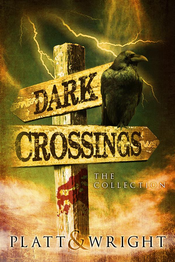 Dark Crossings Cover Contest 2 crow